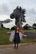 Equestrian event at Steyn City