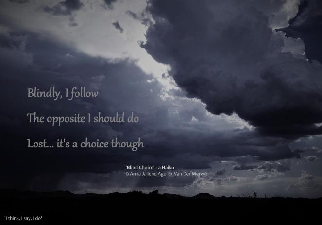 Blind Choice - Haiku