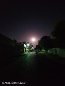 Of Men & Moon (3)