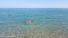 Beaching (2)